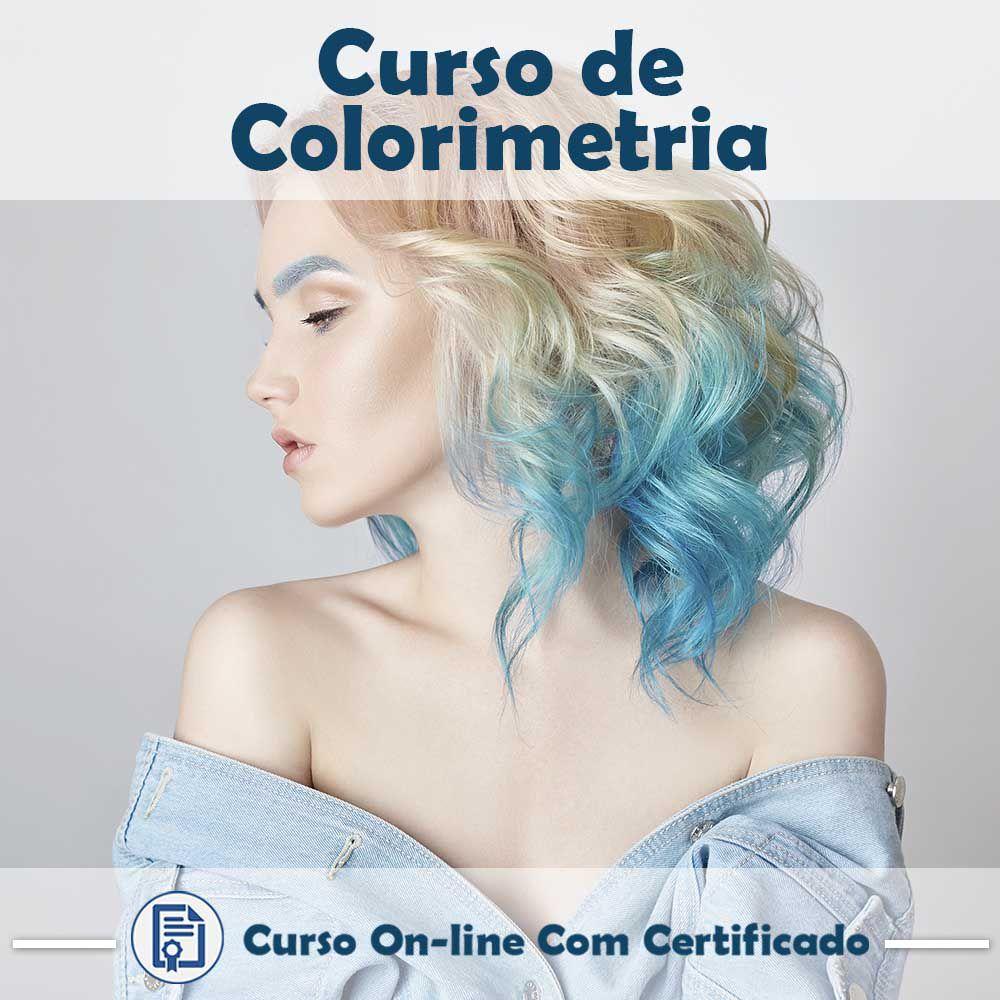 Curso online em videoaula sobre Colorimetria Capilar com Certificado