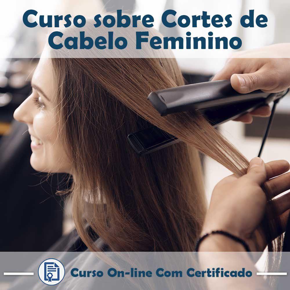Curso online em videoaula sobre Cortes de Cabelo Feminino com Certificado  - Aprova Cursos