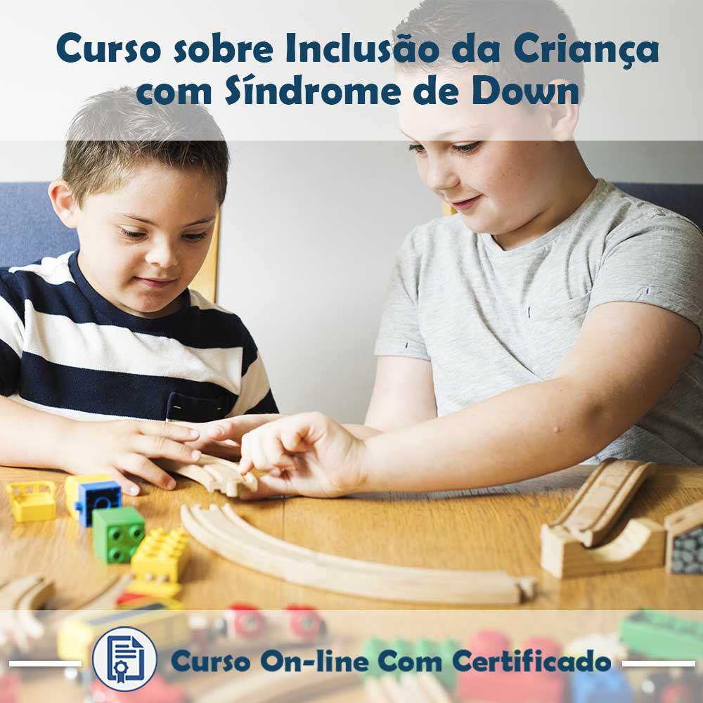 Curso online em videoaula sobre Inclusão da Criança com Síndrome de Down com Certificado
