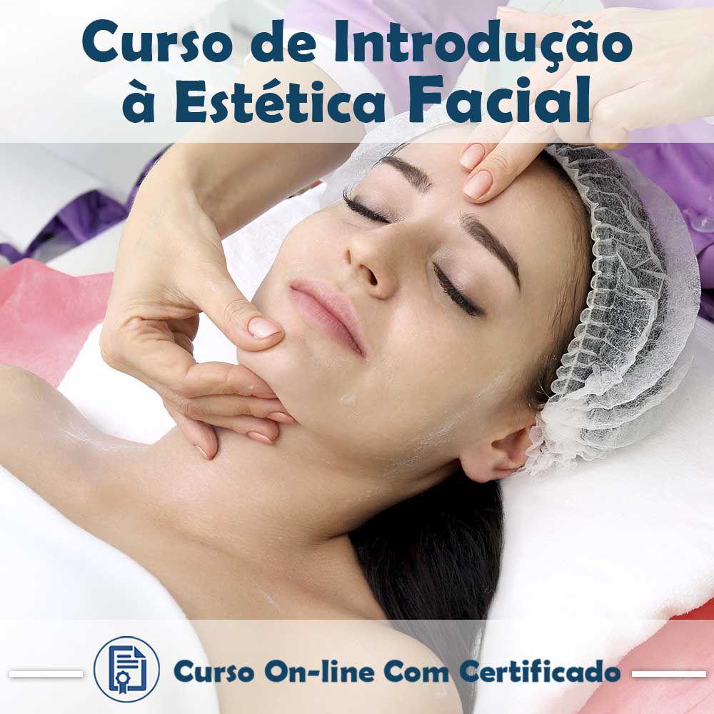 Curso online em videoaula sobre Introdução à Estética Facial com Certificado