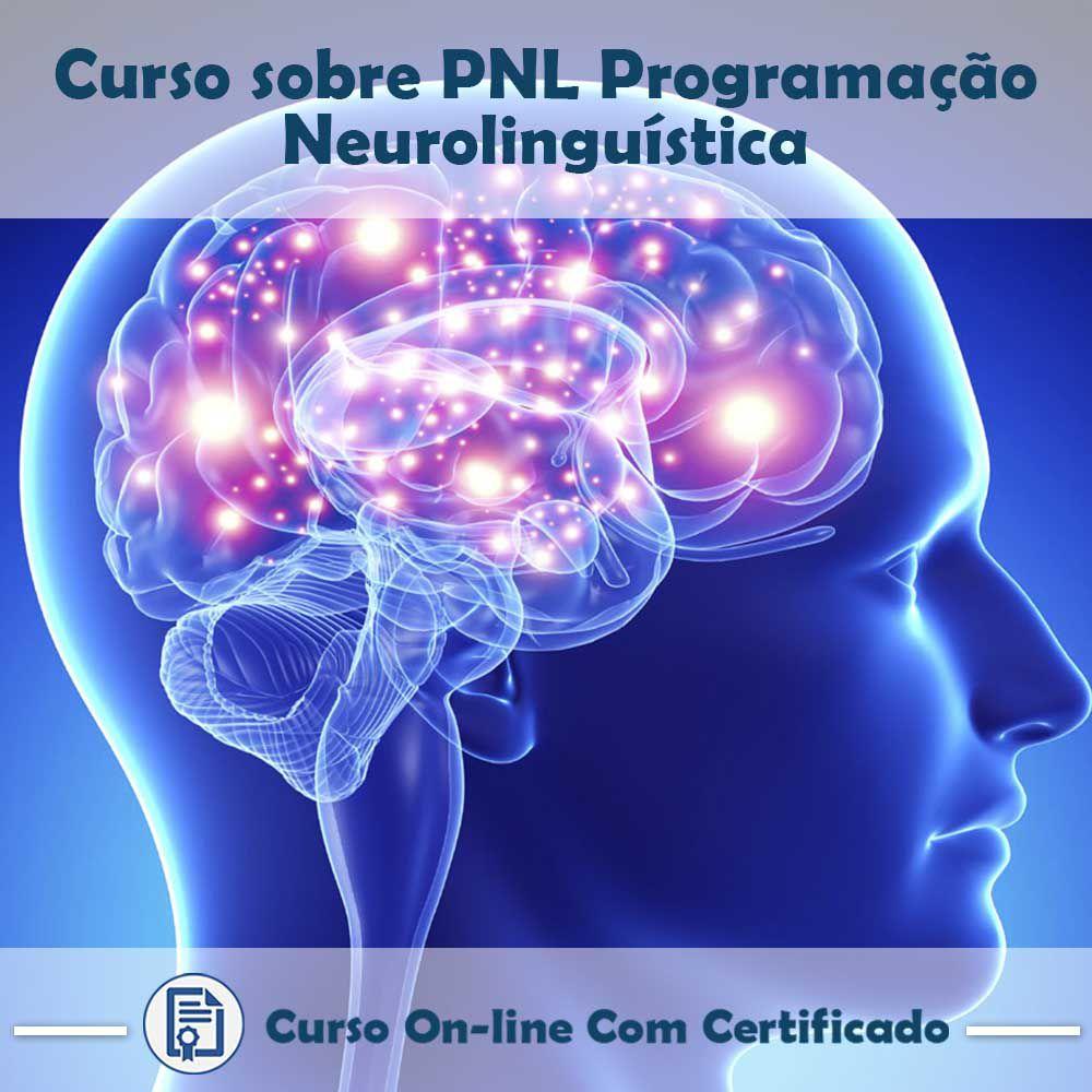 Curso online em videoaula sobre PNL - Programação Neurolinguística com Certificado