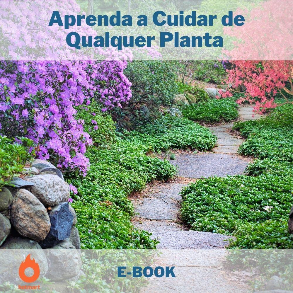 E-book Aprenda a Cuidar de Qualquer Planta