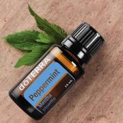 Óleo Essencial de Hortelã - 5 ml - doTERRA | Benefícios e Para que serve
