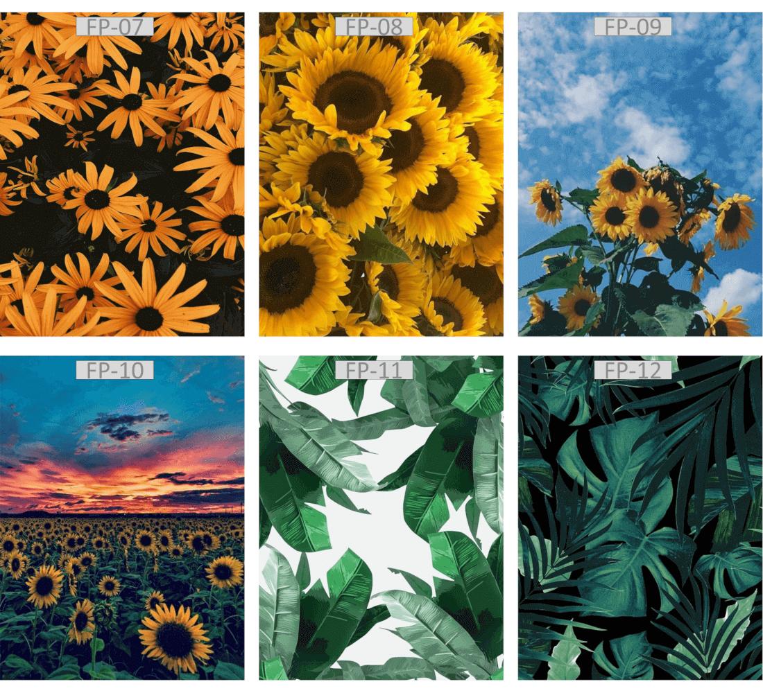 Quadro Canvas tema FLORES E PLANTAS  - Zenliê
