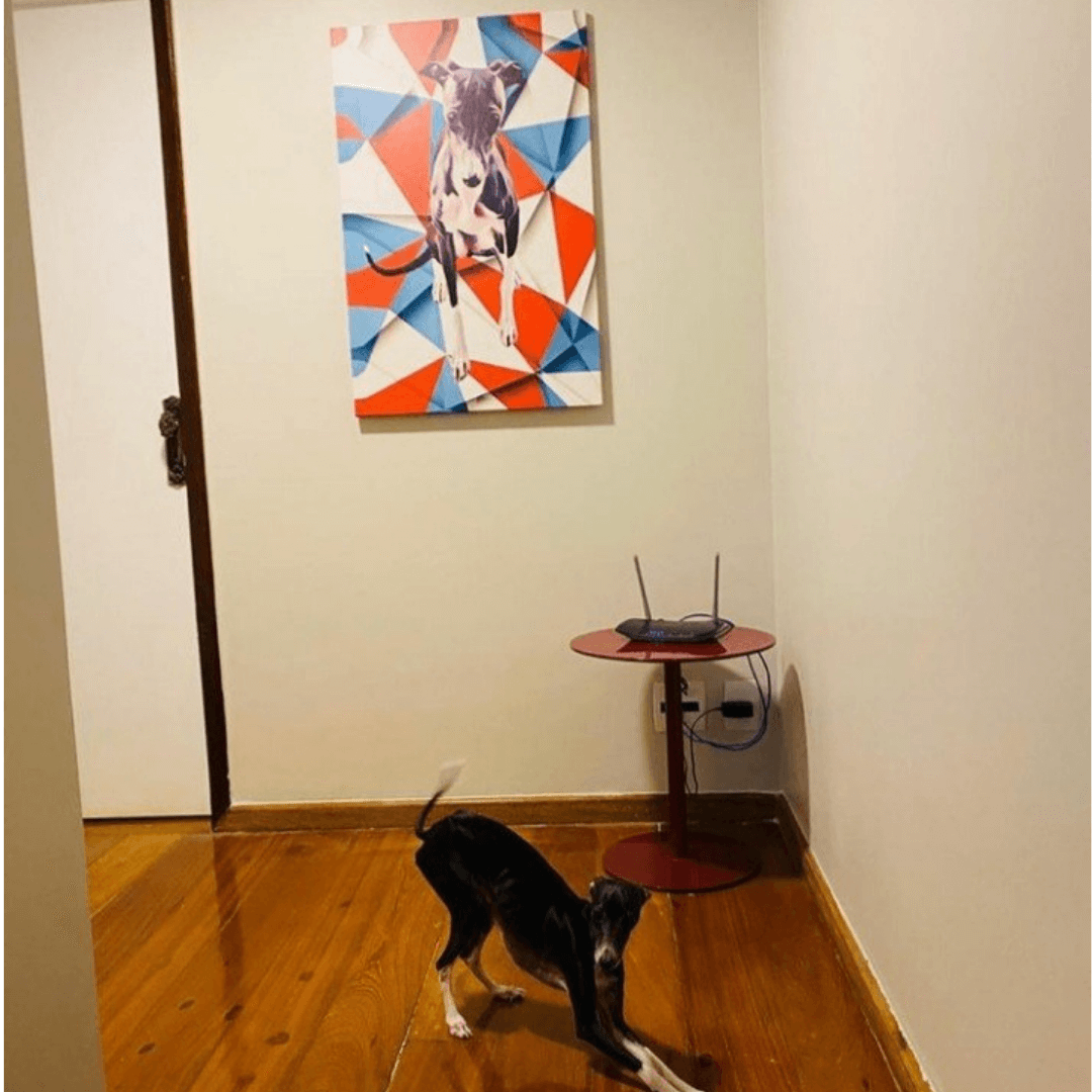 Quadro Canvas tema GEOMÉTRICOS  - Zenliê