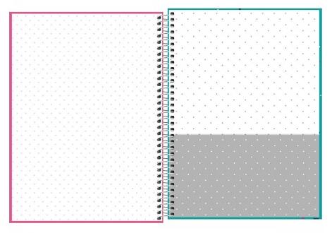 Caderno Espiral Capa Dura Universitário 10 Matérias Bichinhos - Tilibra