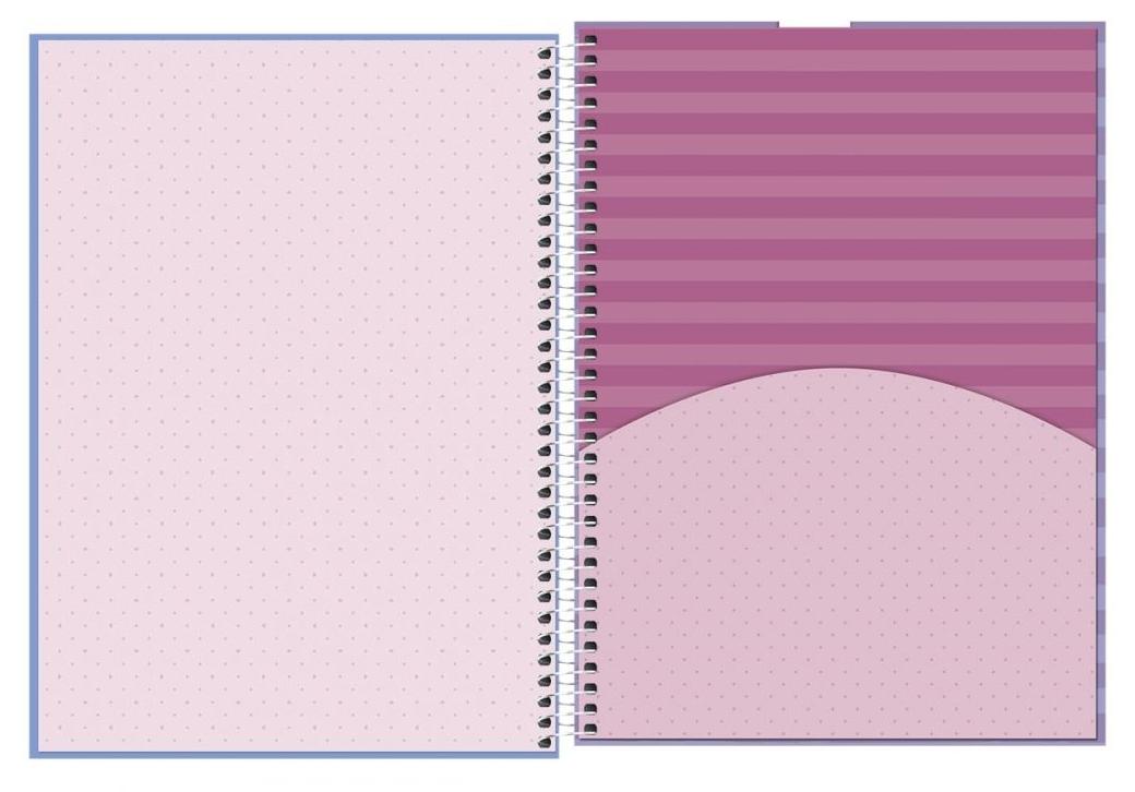 Caderno Espiral Capa Dura Universitário 16 Matérias Rouge - Tilibra