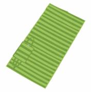 Esteira de Praia Dobrável em Polipropileno Verde