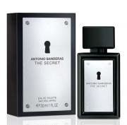 ANTONIO BANDEIRAS THE SECRET