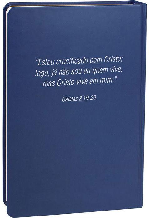 Bíblia Sagrada - Capa Personalizada - Cruz de Cristo - Ultra fina Slim - Possui Tamanho Grande - Capa Dura - Versão Almeida - Auxílios Extras e muito mais - RA