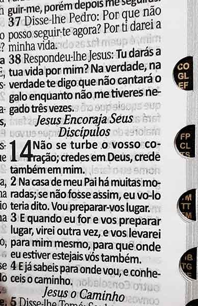 Bíblia Sagrada - LETRAS HIPERGIGANTES - Tamanho Grande - Palavras de Jesus são em Destaque - Almeida Tradicional - Índice na Lateral - Capa Luxo - Corações
