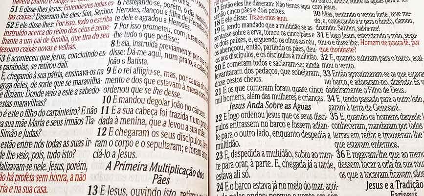Bíblia Sagrada - LETRAS JUMBO - Maior Tamanho de Letras que Existe - Harpa Cristã - Tamanho Grande - As Palavras de Jesus em Vermelho - Versão Tradicional Almeida - Capa Luxo - Floral Verde e Faixa Ve