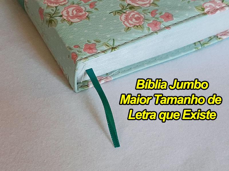 Bíblia Sagrada - LETRAS JUMBO - Maior Tamanho de Letras que Existe - Harpa Cristã - Tamanho Grande - As Palavras de Jesus em Vermelho - Versão Tradicional Almeida - Capa Luxo - Floral Verde e faixa Ro