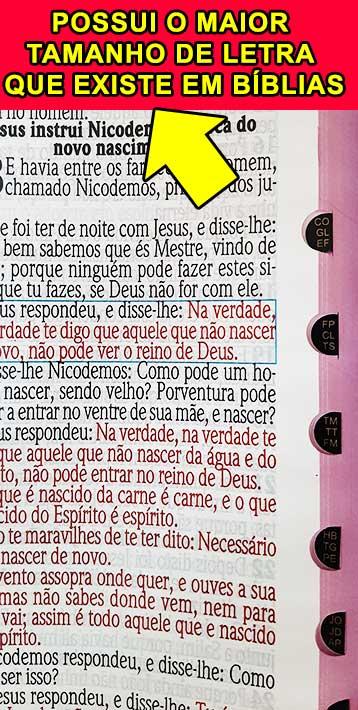 Bíblia Sagrada - LETRAS JUMBO - Maior Tamanho de Letras que Existe - Harpa Cristã - Tamanho Grande - As Palavras de Jesus em Vermelho - Versão Tradicional Almeida - Capa Zíper - Pink, Floral Creme, Pi