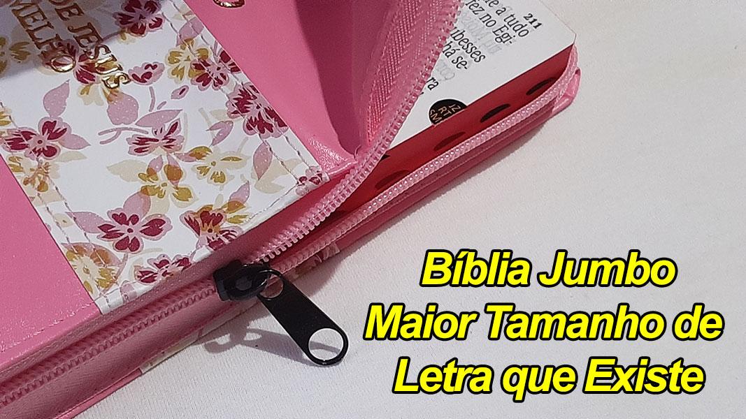 Bíblia Sagrada - LETRAS JUMBO - Maior Tamanho de Letras que Existe - Harpa Cristã - Tamanho Grande - As Palavras de Jesus em Vermelho - Versão Tradicional Almeida - Capa Zíper - Rosa, Floral, Rosa