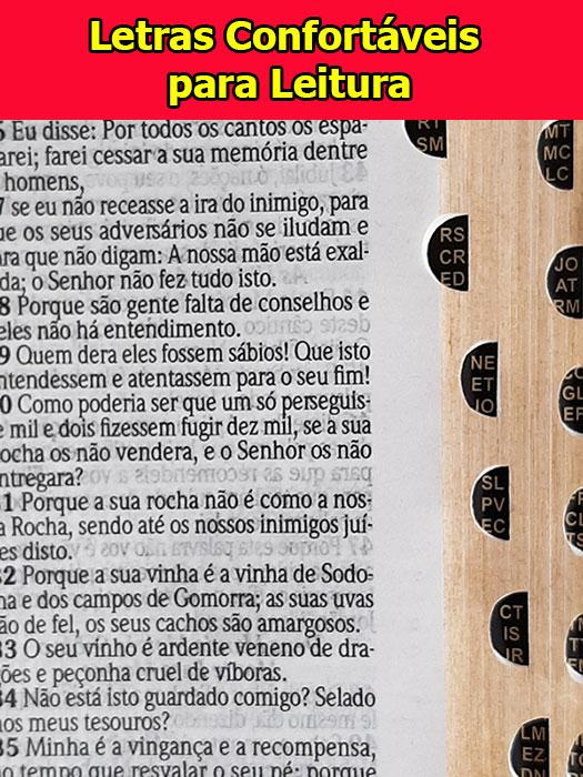 Bíblia Sagrada - Possui LETRAS GIGANTES - Harpa Cristã - Tamanho Grande - Modelo Carteira c/ Presilha - Ganhe Grátis Caneta Cristã - Versão Almeida - Índice na Lateral - Duotone