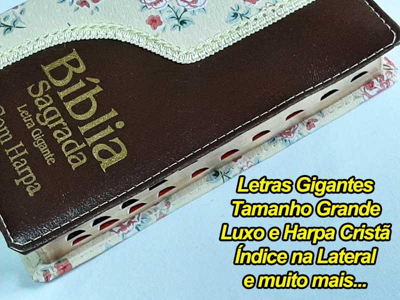 Bíblia Sagrada - Possui LETRAS GIGANTES - Harpa Cristã - Tamanho Grande - Slim Ultra fina - Versão Almeida - Luxo - Índice na Lateral - Duotone - Flores e Marrom