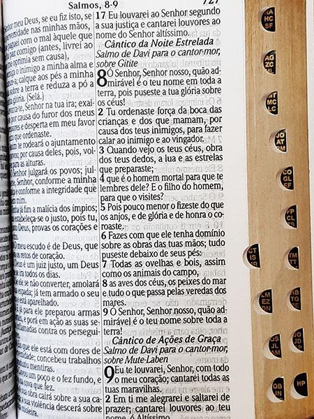 Bíblia Sagrada - Possui LETRAS HIPERGIGANTES - Harpa Cristã - Tamanho Grande - Palavras de Jesus são em Destaque - Versão Almeida Tradicional - Zíper - Índice na Lateral - Auxílios - Azul Nobre