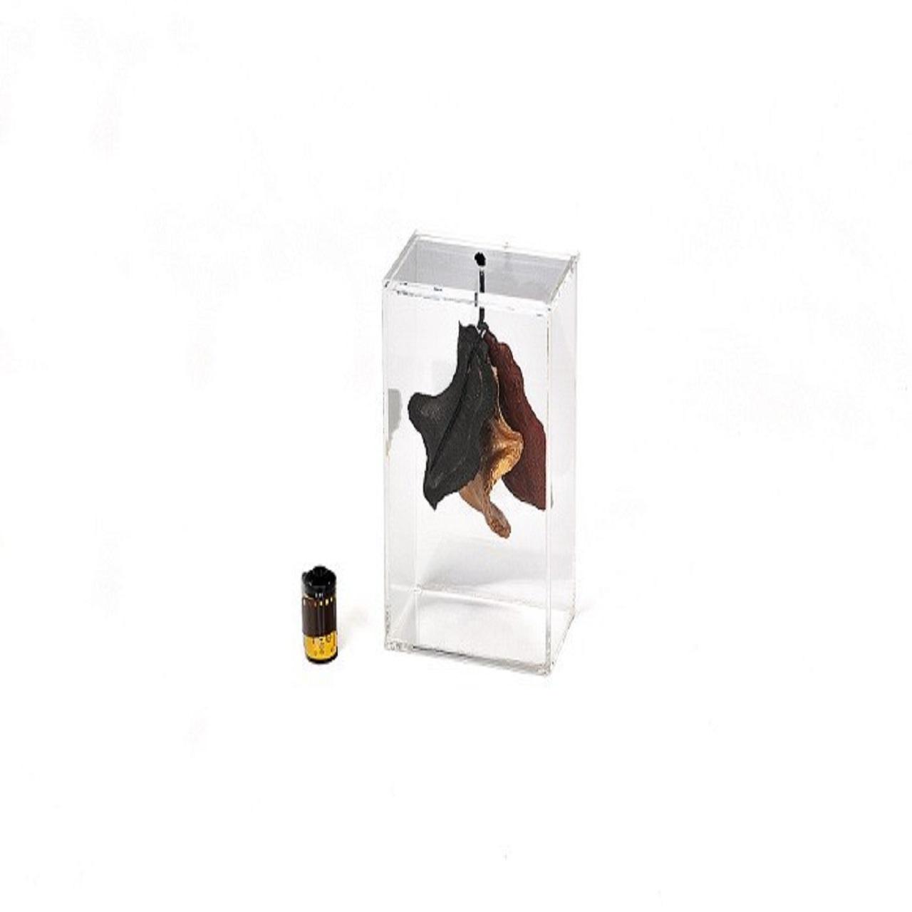 Caixa P Boca de Sapo | preta, colorida e laranja