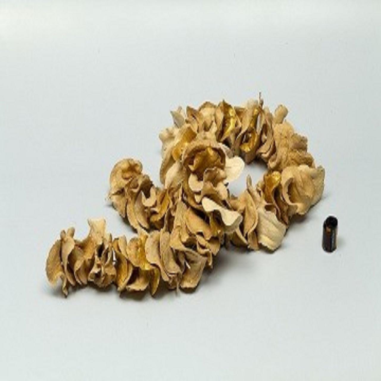 Escultura Boca de Sapo | alvejado com dourado