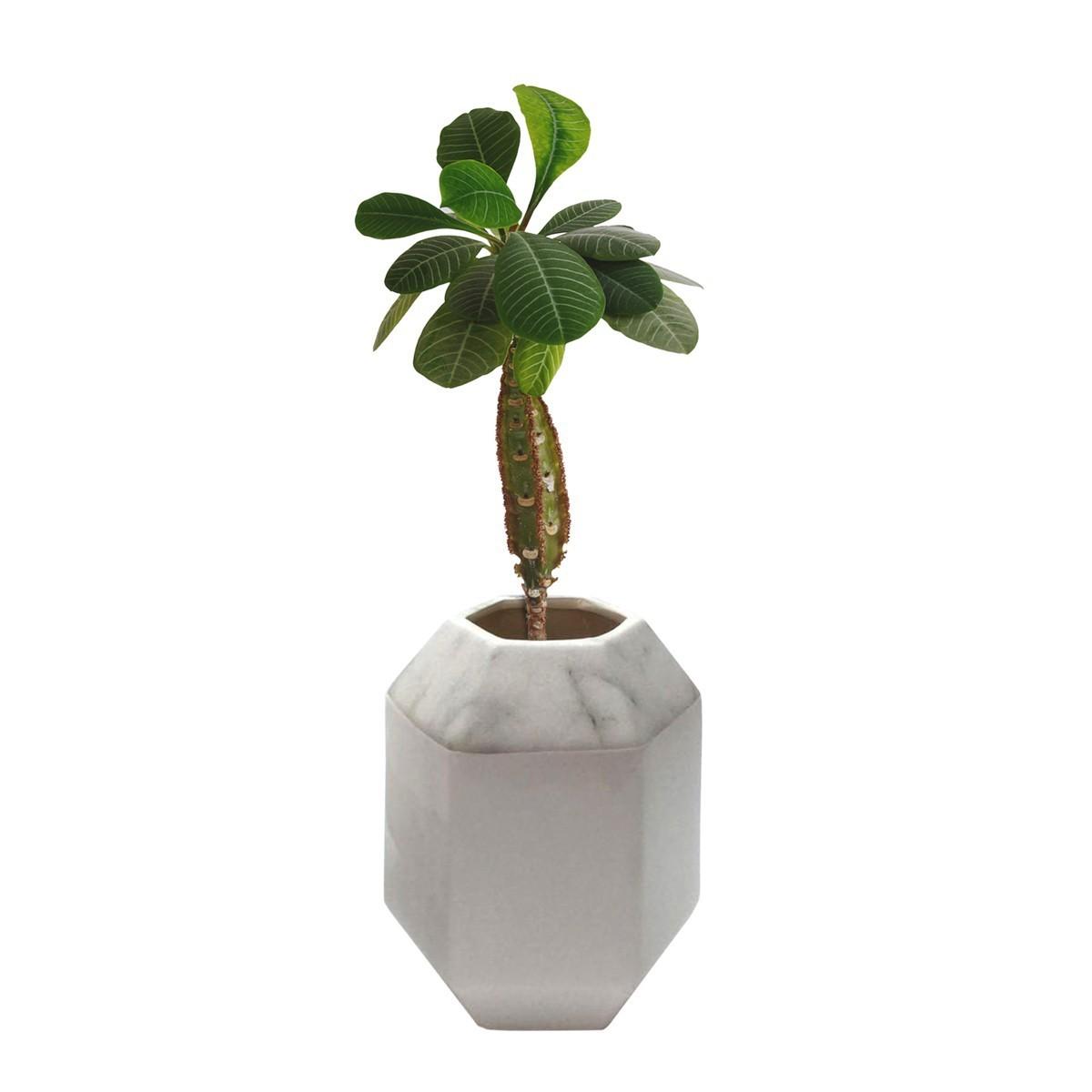 Vaso Ceramica Hexa