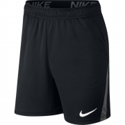 SHORTS NIKE DRY FIT 5.0 PTO/CZA/BCO