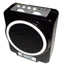 Kit Professor Portátil c/ Caixa + Microfone c/ Fio BW700USB - CSR