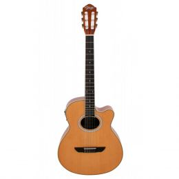 Viol�o Cl�ssico Pro Nylon Natural Satin - Seizi