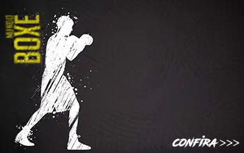 https://www.fightstore.com.br/lutas/boxe