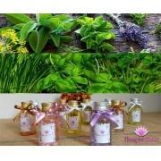 Difusor de Ambiente com Varetas - Aromas Dvs: Herbal e Ervas - Flowerfield