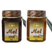 Mel de Abelha Apiário Sol - Vidro de 500gr