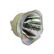 LÂMPADA P/ PROJETOR EPSON POWERLITE S39 W39 X39 S41+ X41+ S42+ W42+ W05+ X05+ 107 108 109W 660 760HD 2500 EX3260 (ELPLP96 / V13H010L96)