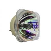 LÂMPADA P/ PROJETOR OPTOMA EH501 HD36 X501 W501 W6101 RX825 HD151X OPX4045 (BL-FU310A)