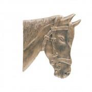 Cara De Cavalo Parede