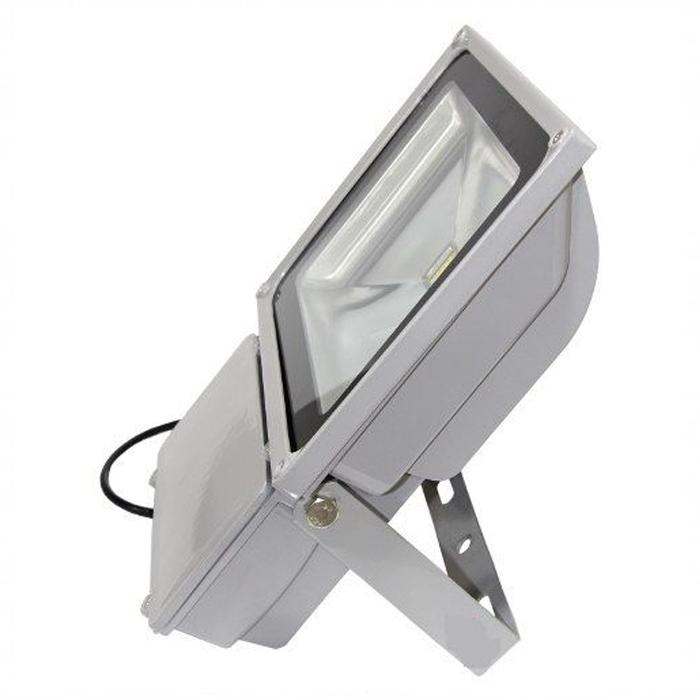 Refletor Led 100w Bivolt Holofote A Prova agua Branco Frio 110v 220V Até 90% Econômico  - HARDFAST INFORMÁTICA