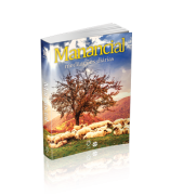 MANANCIAL BOLSO Vol. 16 – 2019