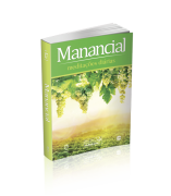 MANANCIAL BOLSO Vol. 17 – 2020