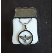 CF24 - Colar Aço Medalha Espirito Santo 23cm cc60cm