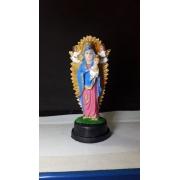 IV190 - Nossa Senhora do Perpetuo Socorro 08cm Resina