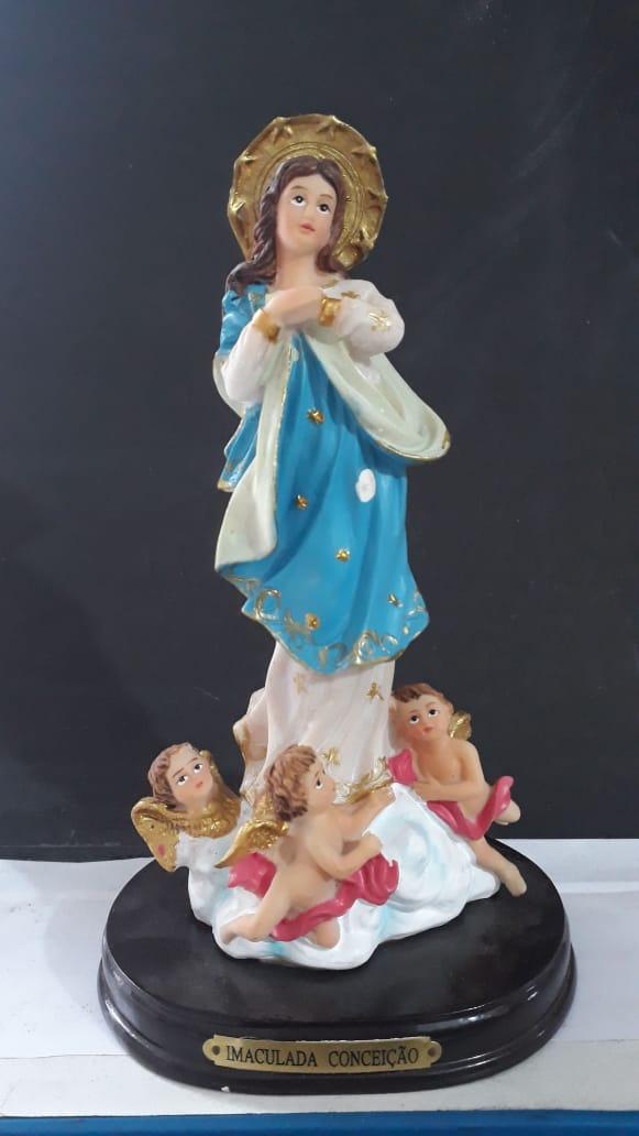 ID394 - Imaculada Conceição 20cm Resina  - VindVedShop - Distribuidora Catolica