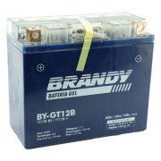 Bateria Brandy BY-GT12B