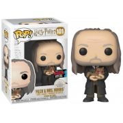 Funko Pop! Harry Potter Nycc 2019 - Filch & Mrs Norris #101