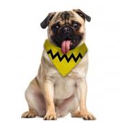 Pets Bandana para Cão e Gato  Snoopy Tam PP
