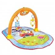 Tapete Interativo de ginástica para bebê colorido.