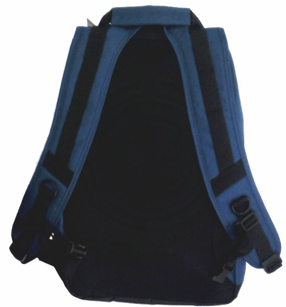 Mochila Element Mohave Azul Marinho