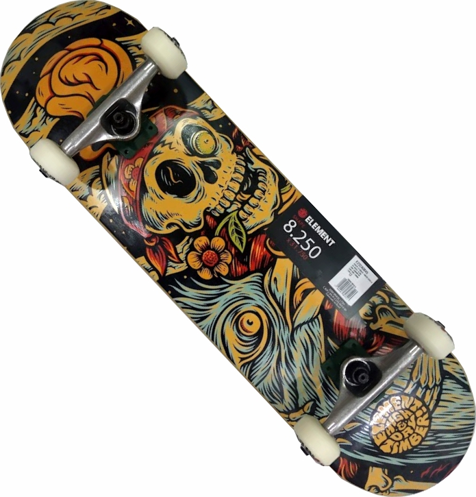 Skate Element Montado Completo Pro Tmber Crail Next BS Visible - Caveira