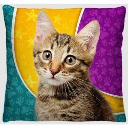 Capa para Almofada Estampada Tecido Microfibra - Gato Malhado A93