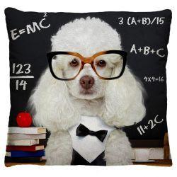 Capa para Almofada Estampada Tecido Microfibra - Cachorro Intelectual A243