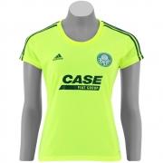 Camisa Feminina Palmeiras II 2010