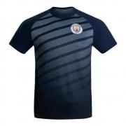 Camiseta Manchester City Dry Nicholas